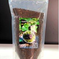 Sanshu Moss Pot オリジナル専用ソイル